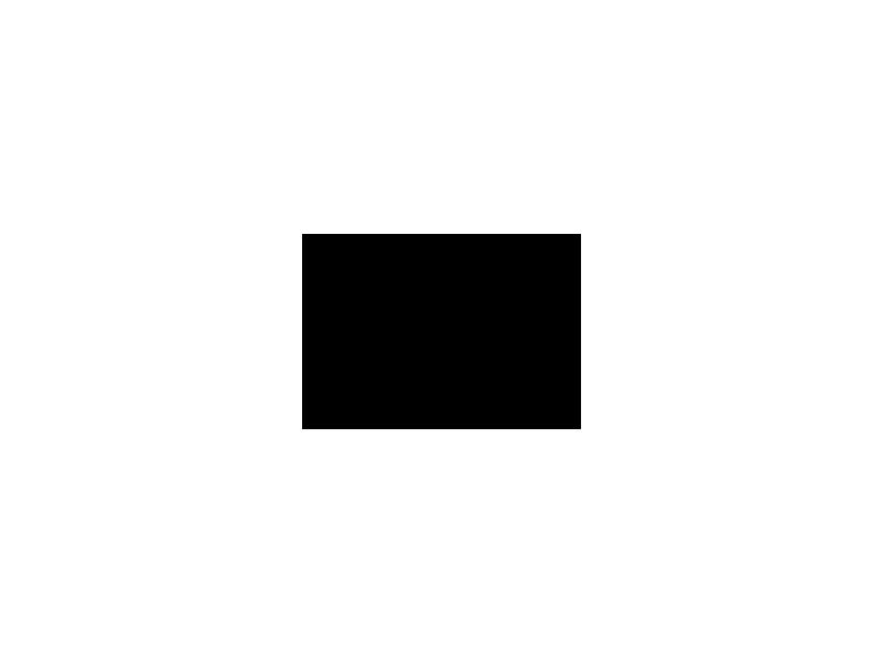 Saukkopari